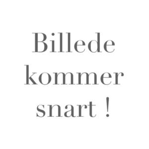 BILLEDE-KOMMER-SNART